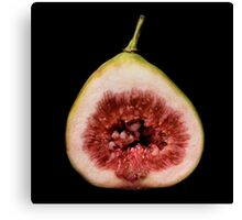 Fig cross-section Canvas Print