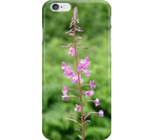 Tall Willow Herb iPhone Case/Skin