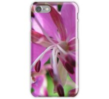 Close-up Willow Herb iPhone Case/Skin
