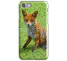 Fox in the garden iPhone Case/Skin