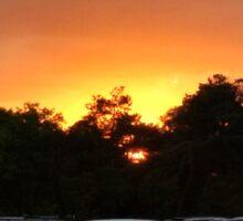deth by careened sunset I Sticker