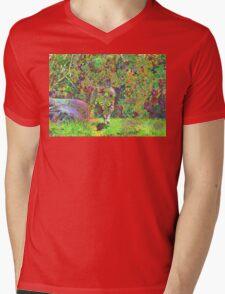 Plasma Cat Mens V-Neck T-Shirt