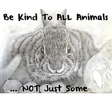 Be Kind to ALL Animals Photographic Print