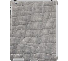Elephant - Skin Pattern and Art - African Wildlife Background iPad Case/Skin