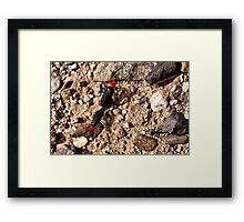 What is that? Framed Print