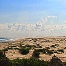Anna Bay - Beach and Dunes Panorama by Adara Rosalie