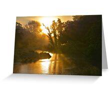 Coon Creek Rays Greeting Card