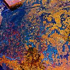 Pilbara Rock Abstract by Nicola Morgan