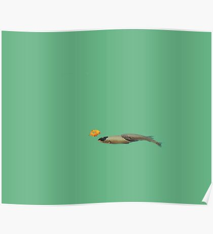 Fish with a leaf Poster