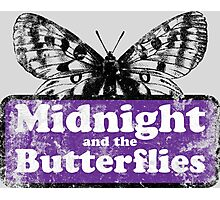 Midnight and the Butterflies Photographic Print
