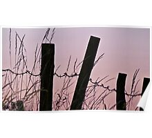 Sunrise in the country with barbed wire Poster