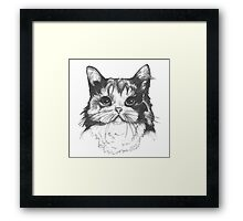 Hey there Kitty Cat!! Framed Print