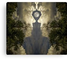 The Creator's Mirror Canvas Print