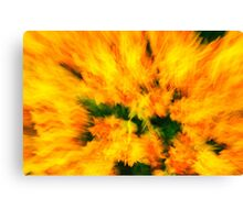 flower rush Canvas Print