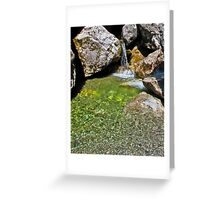 Small waterfall with a pool of water on the rocks Greeting Card