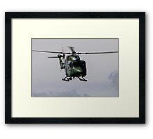 Army Lynx Framed Print