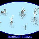 Hattah Lakes by David Fraser