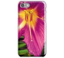 Lily 5 iPhone Case/Skin