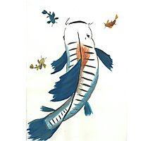 Koi Fish Photographic Print
