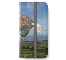 The Red-tailed Hawk over Dungarvin Bay  iPhone Wallet/Case/Skin
