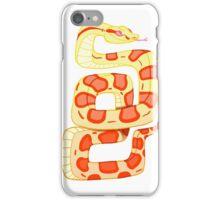 Pretty Snake iPhone Case/Skin