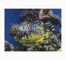 Lion Fish stalking his prey Kids Tee