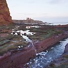 Tantallon castle by Christopher Cullen