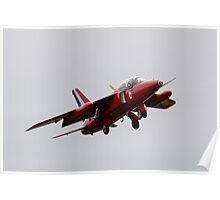 Red Gnat Poster