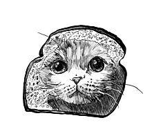 Bread Cat Photographic Print