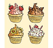 Cupcake Collection Photographic Print