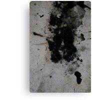 SPLAT! Canvas Print