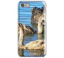 Pen with two cygnets (Mama Swan with kids) (1) iPhone Case/Skin