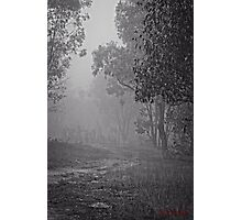 Winter Morning Fog at the Pinnacle in Canberra/ACT/Australia (1) Photographic Print