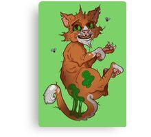 Stinky the cat Canvas Print