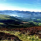 Derwent Water from Skiddaw, Lake District Nat. Park, UK by GeorgeOne