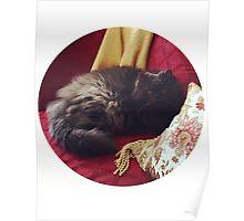 Fancy Cat, Fancy Couch Poster