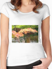 Japanese Maple Tree Fall Foliage Women's Fitted Scoop T-Shirt