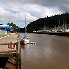 A Boat on the River Dart by kalaryder