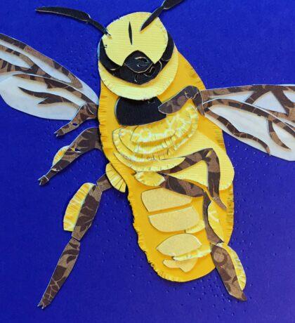 Bee, 2015 by Ana Christensen Sticker