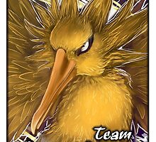 Team Instinct!! by Anarchpeace