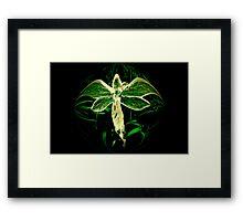 Green Fairy Framed Print
