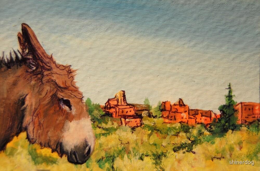 Cripple Creek Donkey~Colorado by shinerdog