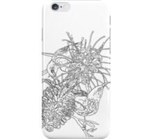 Australian Birds - Honeyeaters iPhone Case/Skin