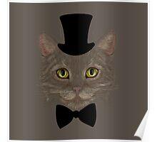 Еlegant Cat  Poster