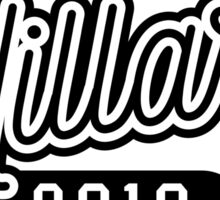 Team Hillary For President 2016 - Campaign T shirt Sticker