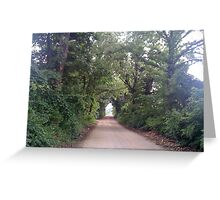 A Tree Covered Lane! Greeting Card