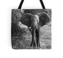 Animalia I - African Savannah Elephant Tote Bag