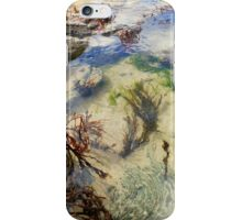Rockpool explorers iPhone Case/Skin
