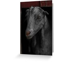 Goat in Red Barn Greeting Card