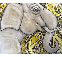 White Elephant Photographic Print